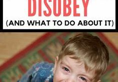 Why Toddlers Deliberately Disobey (And What to Do About It)