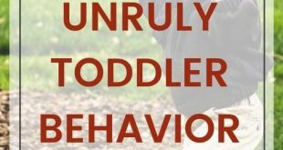 8 Tips for Taming Your Unruly Toddler - Fab Working Mom Life