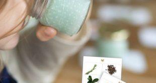 Geruchsdosen nach Montessori (Inkl. Druckvorlagen zum Download)